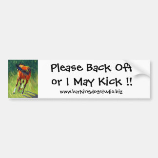 Please Back Off or I May Kick !!, Bumper Sticker