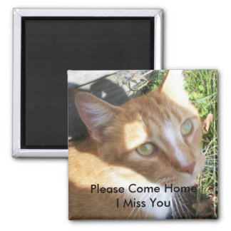 Please Come Home .. I Miss You! Square Magnet
