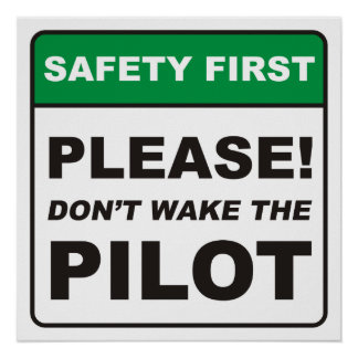 Please, don't wake the Pilot! Poster
