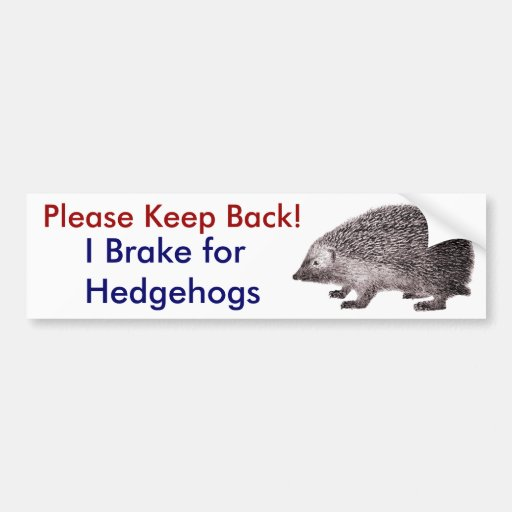 Please Keep Back -- I Brake for Hedgehogs Bumper Stickers