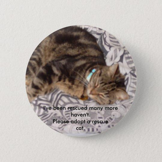 Please rescue a cat 6 cm round badge