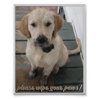 Please Wipe Your Paws! Poster