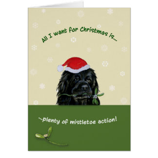 Plenty of Mistletoe Card
