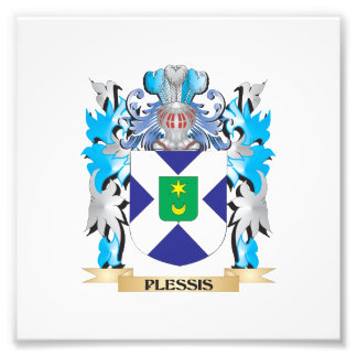 Plessis Coat of Arms - Family Crest Photo