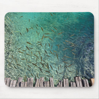 Plitvice Fish Mouse Mat