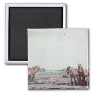 Plough Horses Square Magnet