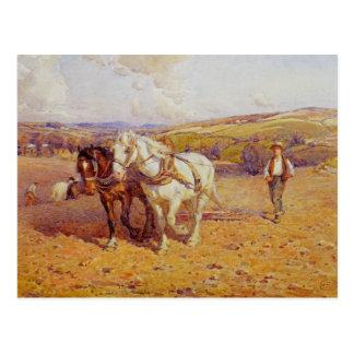 Ploughing Postcard