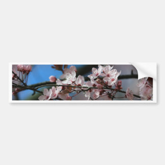 Plum blossom bumper sticker