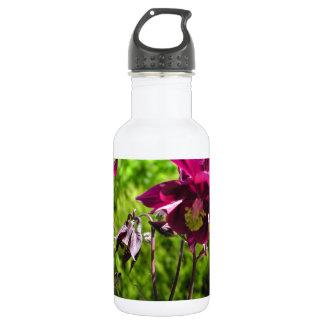 Plum purple flowers. Aquilegia. 532 Ml Water Bottle