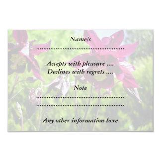 Plum purple flowers. Aquilegia. Card