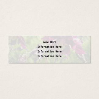 Plum purple flowers. Aquilegia. Mini Business Card