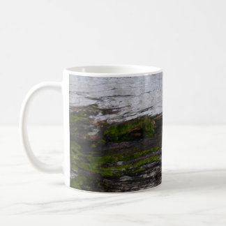 Plumas Eureka State Park tree bark mug #2