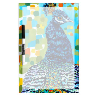 Plumed Peacock II Dry Erase Board