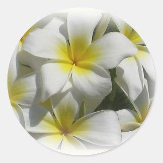 Plumeria Celedine Tropical Flowers Sticker