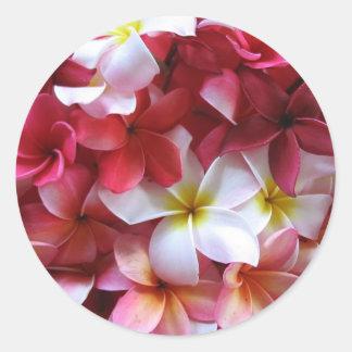 Plumeria Flower Cluster Bouquet Classic Round Sticker