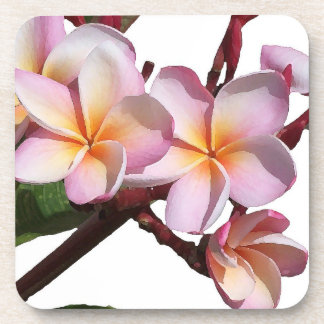 Plumeria Flowers Cork Coaster