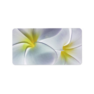 Plumeria Frangipani Hawaii Flower Customized Blank Address Label