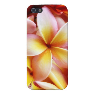 Plumeria Frangipani Hawaii Flower Customized Blank iPhone 5/5S Cases