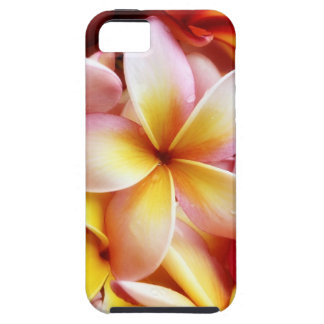 Plumeria Frangipani Hawaii Flower Customized Blank iPhone 5 Cover