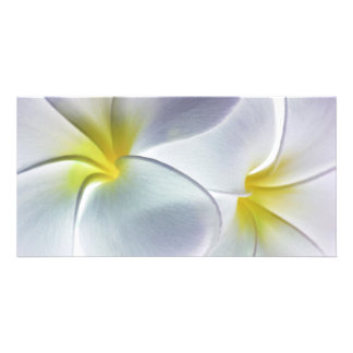 Plumeria Frangipani Hawaii Flower Customized Blank Personalised Photo Card