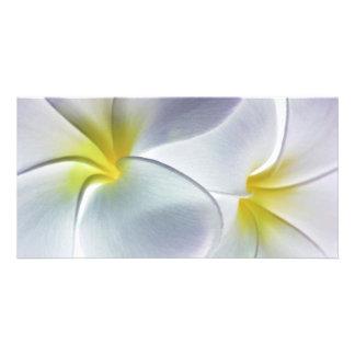 Plumeria Frangipani Hawaii Flower Customized Blank Personalised Photo Card