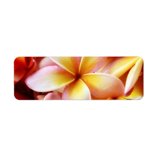 Plumeria Frangipani Hawaii Flower Customized Blank Return Address Label