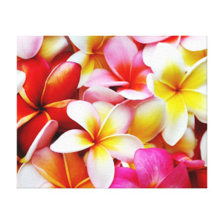 Plumeria Frangipani Hawaii Flower Customized Canvas Print