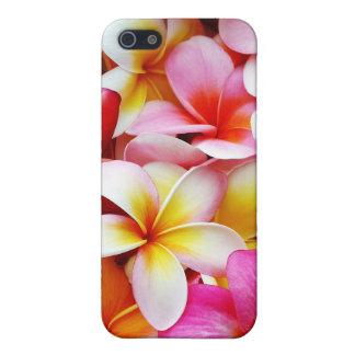 Plumeria Frangipani Hawaii Flower Customized Cover For iPhone 5/5S