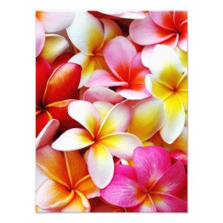 Plumeria Frangipani Hawaii Flower Customized Photo