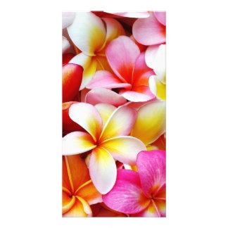 Plumeria Frangipani Hawaii Flower Customized Photo Greeting Card