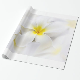 Plumeria Frangipani Hawaii Flower Flowers Template Wrapping Paper