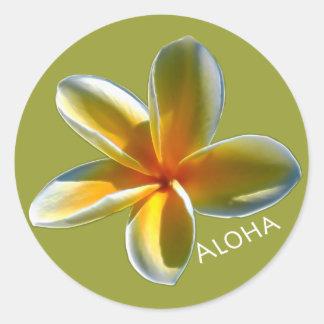 Plumeria with Aloha Classic Round Sticker