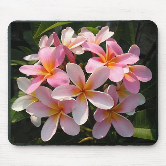 Plumerias in Bloom Mouse Mat