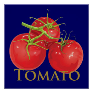 Plump Red Tomatoes Poster