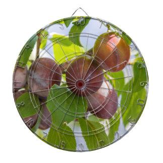 plums on tree dartboard