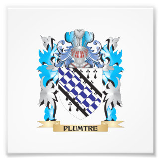 Plumtre Coat of Arms - Family Crest Photo