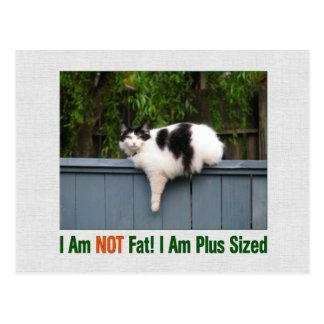 Plus Sized Kitty Postcards