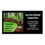 Plush Green Landscape Lawn Care Business