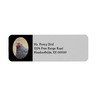 Plymouth Barred Rock Hen Photograph Return Address Label