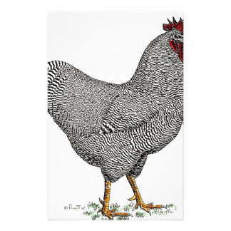 Plymouth Rock Chicken Drawing Customised Stationery