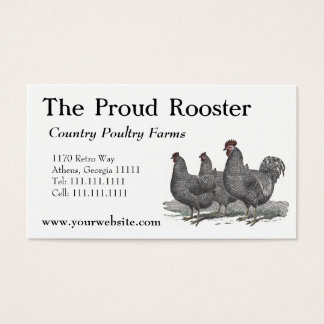 Plymouth Rock Chickens, Rooster Business Card