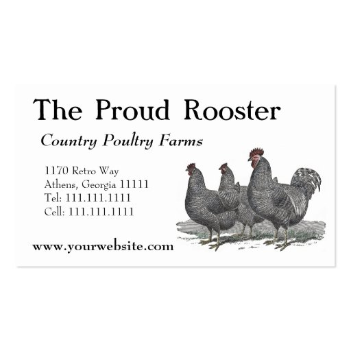 Plymouth Rock Chickens, Rooster Business Card Template