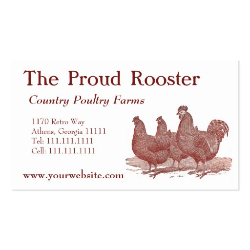 Plymouth Rock Chickens, Rooster Business Card Templates