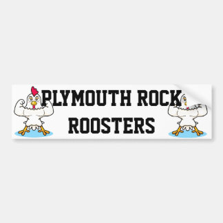 Plymouth Rock Roosters Bumper Sticker