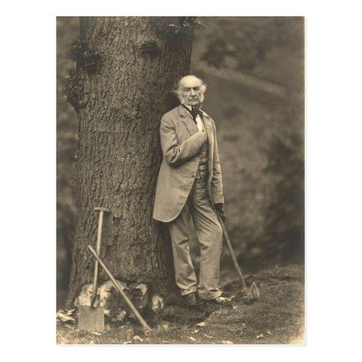 PM William Gladstone Post Cards