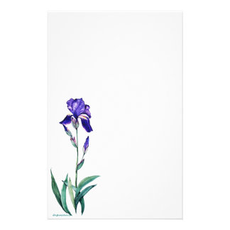 PMACarlsonElegant Iris Staionary Stationery