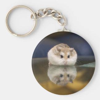 PMT reflects (keychain)