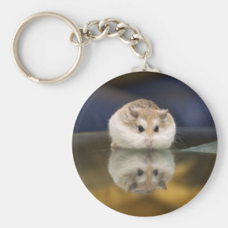 PMT the hamster: Reflections Key Ring