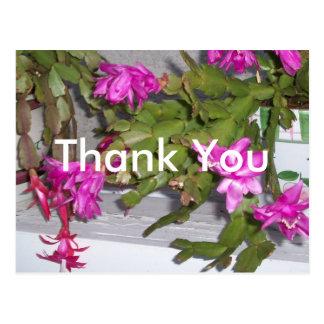 Pnk Flwr Cactus Thk-U Postcard