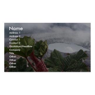 Poas Volcano At Caldera And Poor Mans Umbrella Business Card